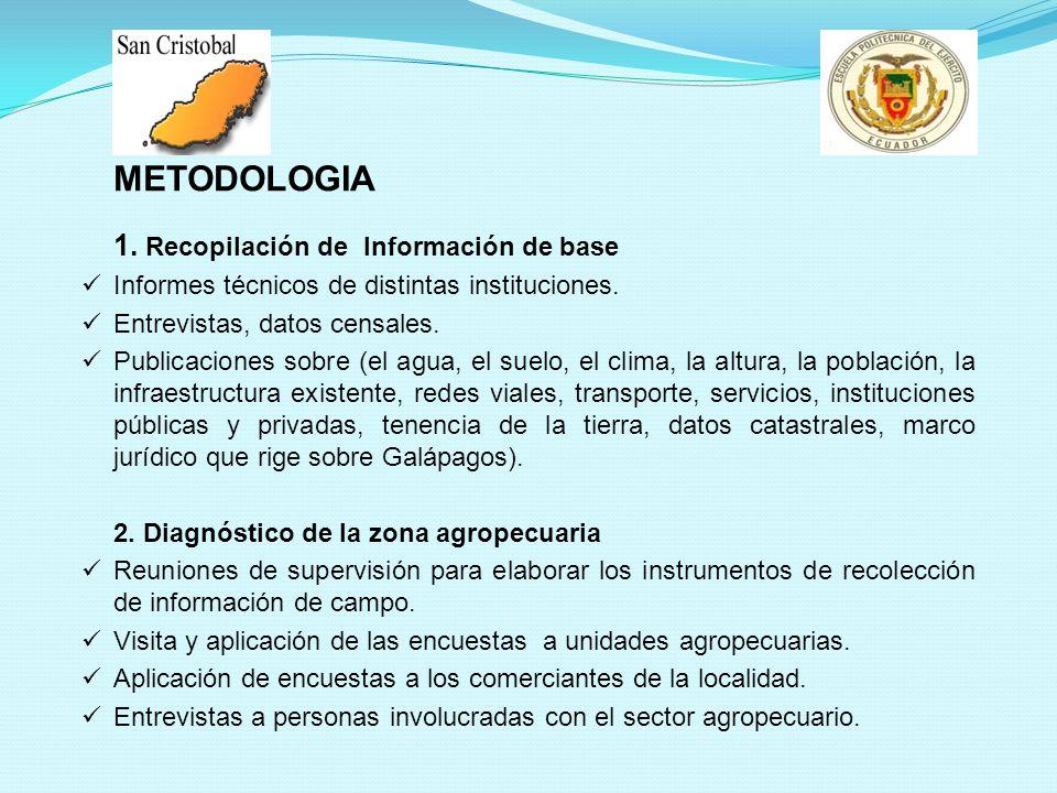 METODOLOGIA 1. Recopilación de Información de base Informes técnicos de distintas instituciones. Entrevistas, datos censales. Publicaciones sobre (el