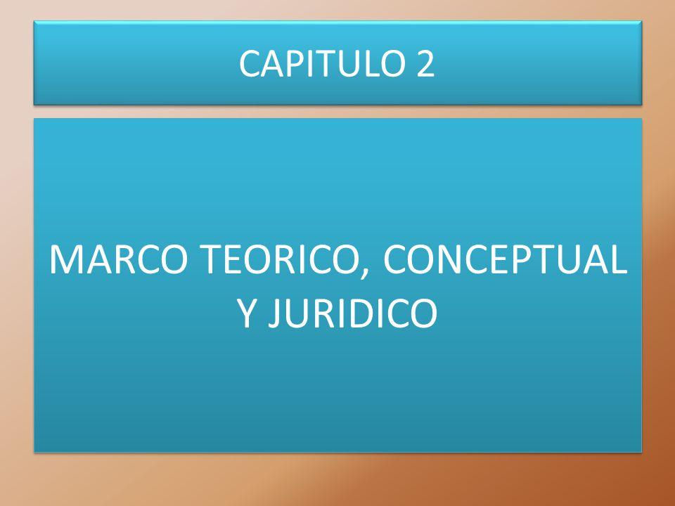 CAPITULO 2 MARCO TEORICO, CONCEPTUAL Y JURIDICO