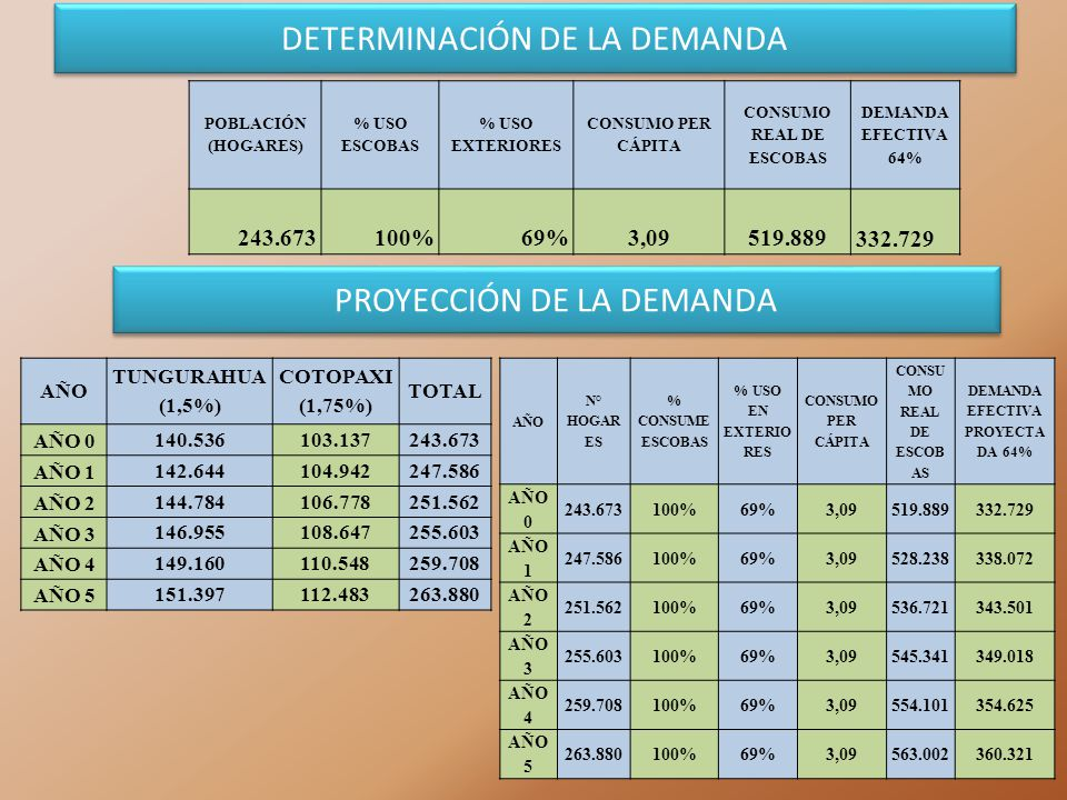 DETERMINACIÓN DE LA DEMANDA POBLACIÓN (HOGARES) % USO ESCOBAS % USO EXTERIORES CONSUMO PER CÁPITA CONSUMO REAL DE ESCOBAS DEMANDA EFECTIVA 64% 243.673