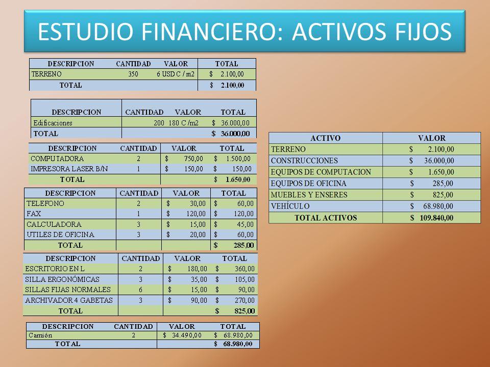 ESTUDIO FINANCIERO: ACTIVOS FIJOS