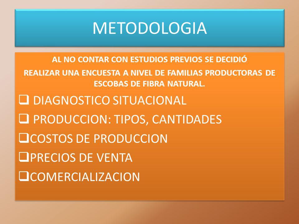 METODOLOGIA AL NO CONTAR CON ESTUDIOS PREVIOS SE DECIDIÓ REALIZAR UNA ENCUESTA A NIVEL DE FAMILIAS PRODUCTORAS DE ESCOBAS DE FIBRA NATURAL. DIAGNOSTIC