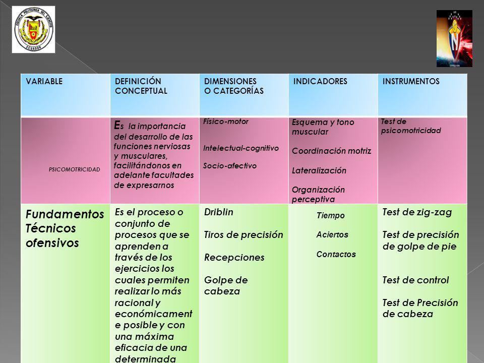 VARIABLEDEFINICIÓN CONCEPTUAL DIMENSIONES O CATEGORÍAS INDICADORESINSTRUMENTOS PSICOMOTRICIDAD E s la importancia del desarrollo de las funciones nerv