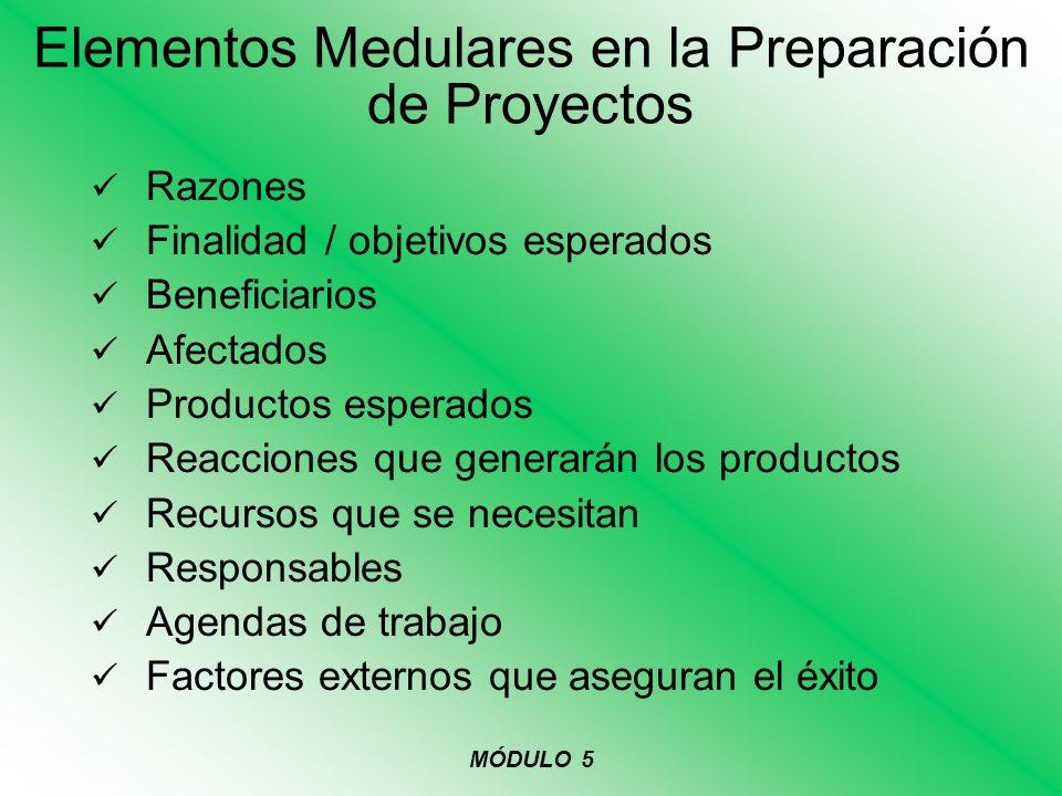 Elementos Medulares en la Preparación de Proyectos Razones Finalidad / objetivos esperados Beneficiarios Afectados Productos esperados Reacciones que