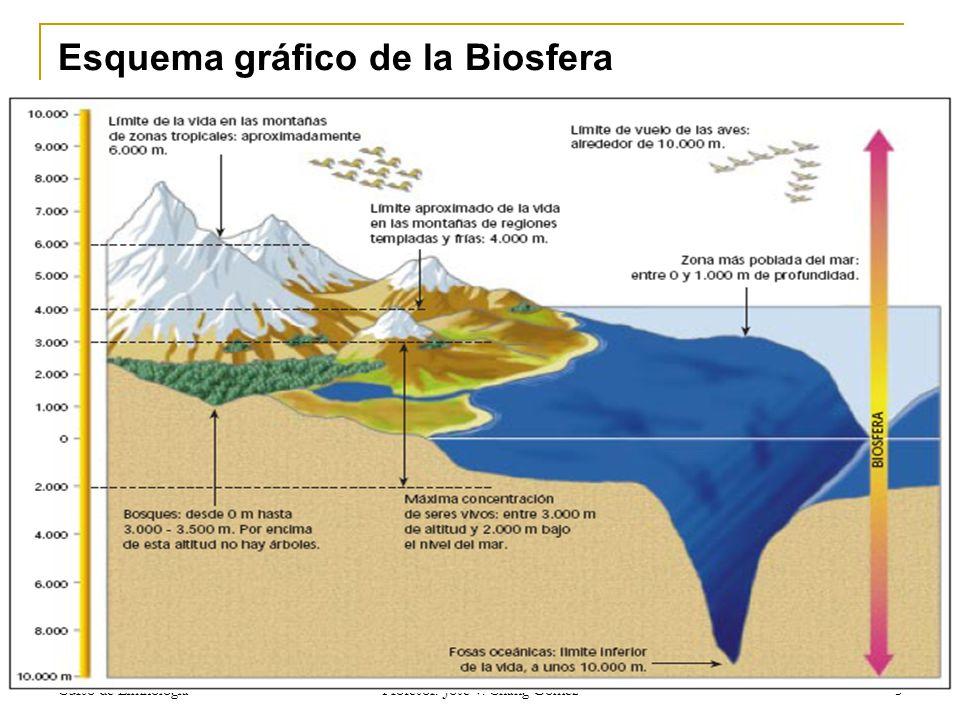 Curso de Limnologia Profesor: Jose V. Chang Gómez 5 Esquema gráfico de la Biosfera