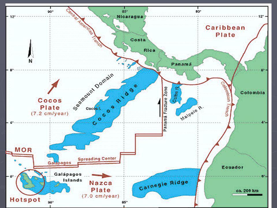 L a deriva de los continentes crea corteza en unas zonas y la destruye en otras.
