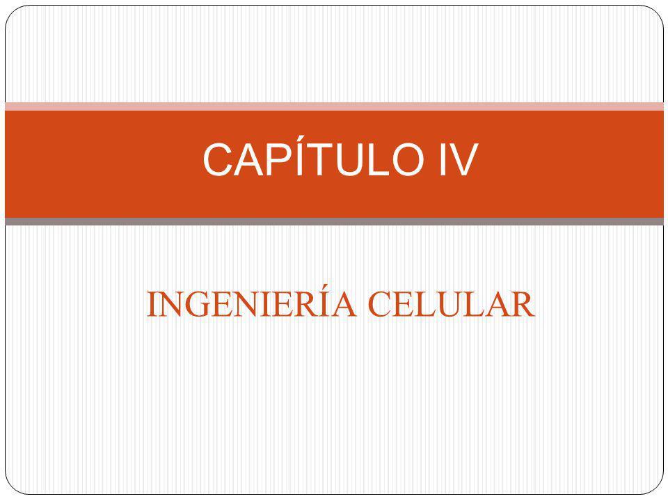 INGENIERÍA CELULAR CAPÍTULO IV