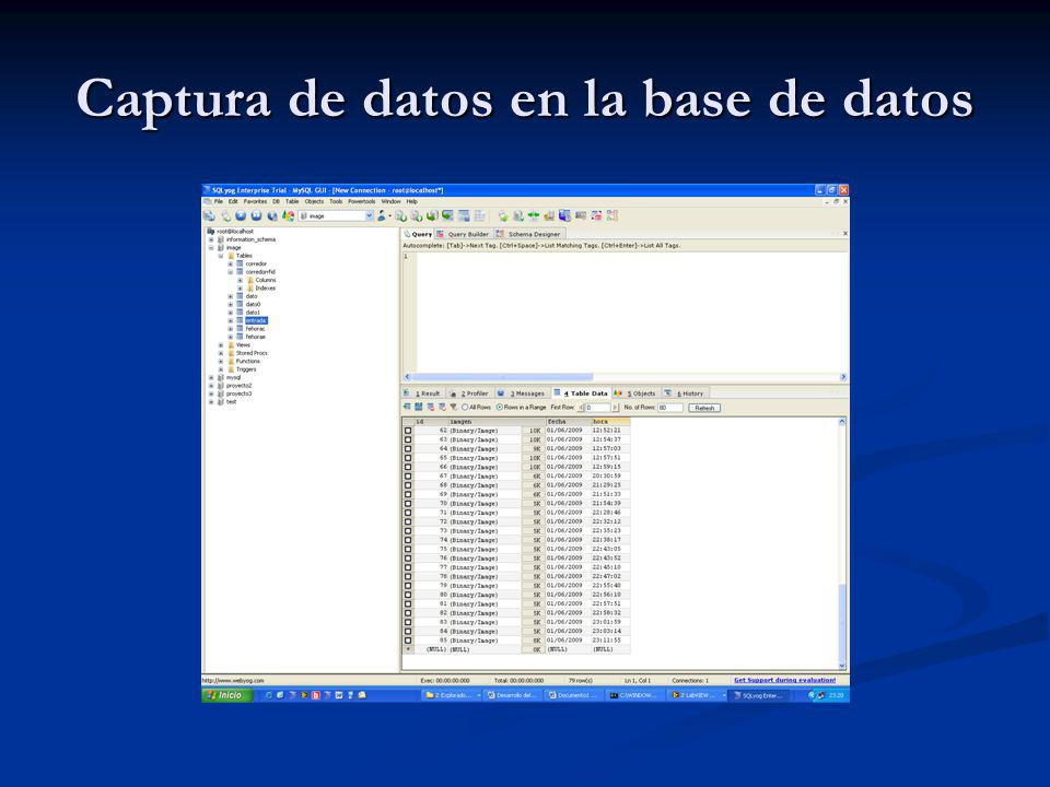 Captura de datos en la base de datos