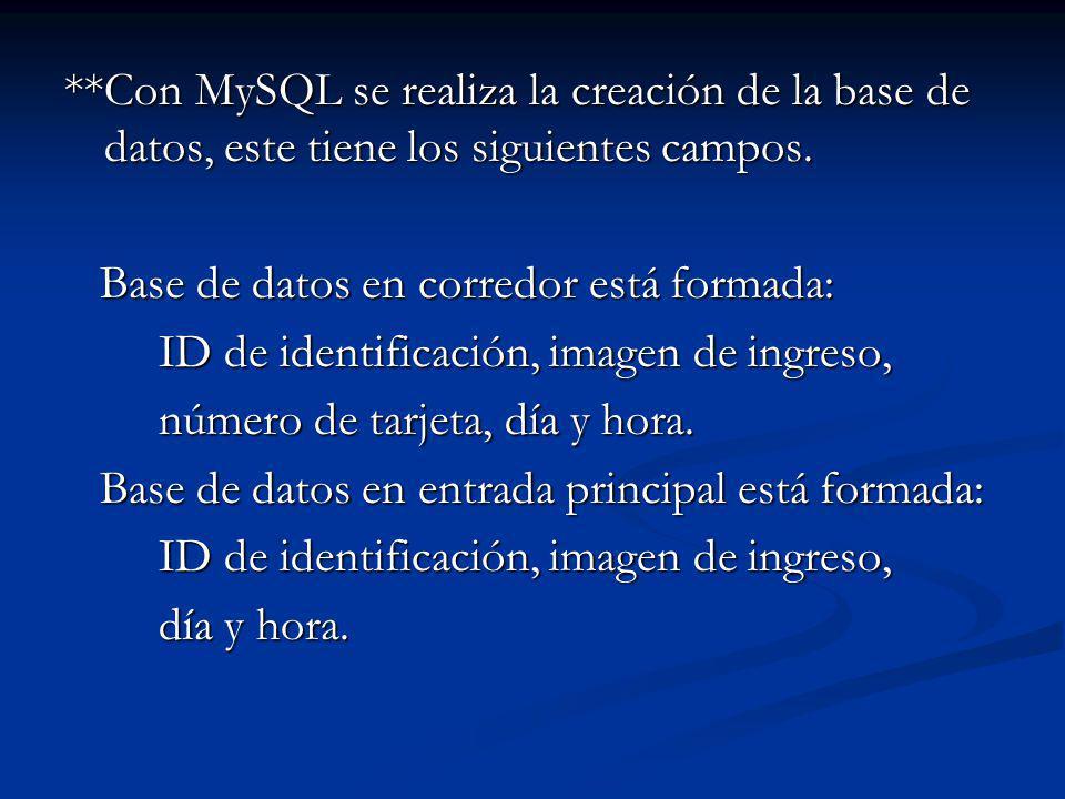 **Con MySQL se realiza la creación de la base de datos, este tiene los siguientes campos. Base de datos en corredor está formada: Base de datos en cor