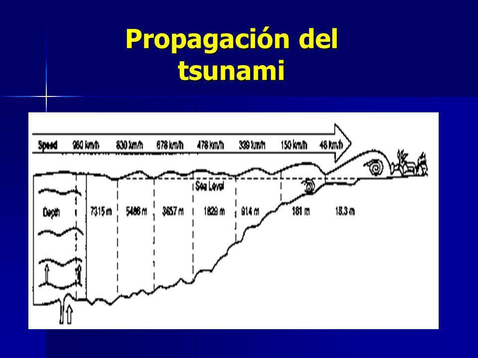 Propagación del tsunami
