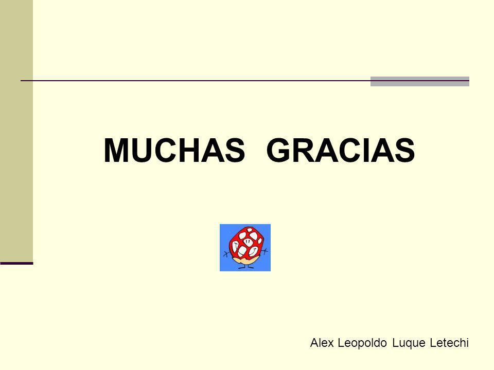 MUCHAS GRACIAS Alex Leopoldo Luque Letechi