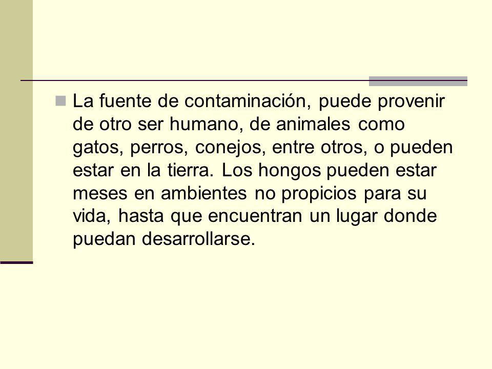 La fuente de contaminación, puede provenir de otro ser humano, de animales como gatos, perros, conejos, entre otros, o pueden estar en la tierra. Los