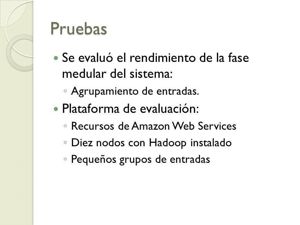 Pruebas Se evaluó el rendimiento de la fase medular del sistema: Agrupamiento de entradas. Plataforma de evaluación: Recursos de Amazon Web Services D