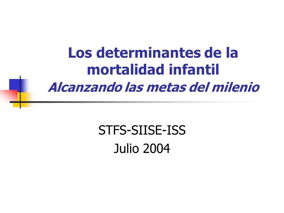 Los determinantes de la mortalidad infantil Alcanzando las metas del milenio STFS-SIISE-ISS Julio 2004
