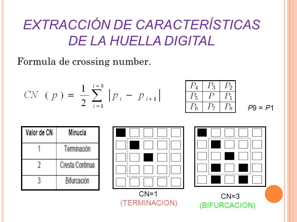 EXTRACCIÓN DE CARACTERÍSTICAS DE LA HUELLA DIGITAL Formula de crossing number. P9 = P1 CN=1 (TERMINACION) CN=3 (BIFURCACION)
