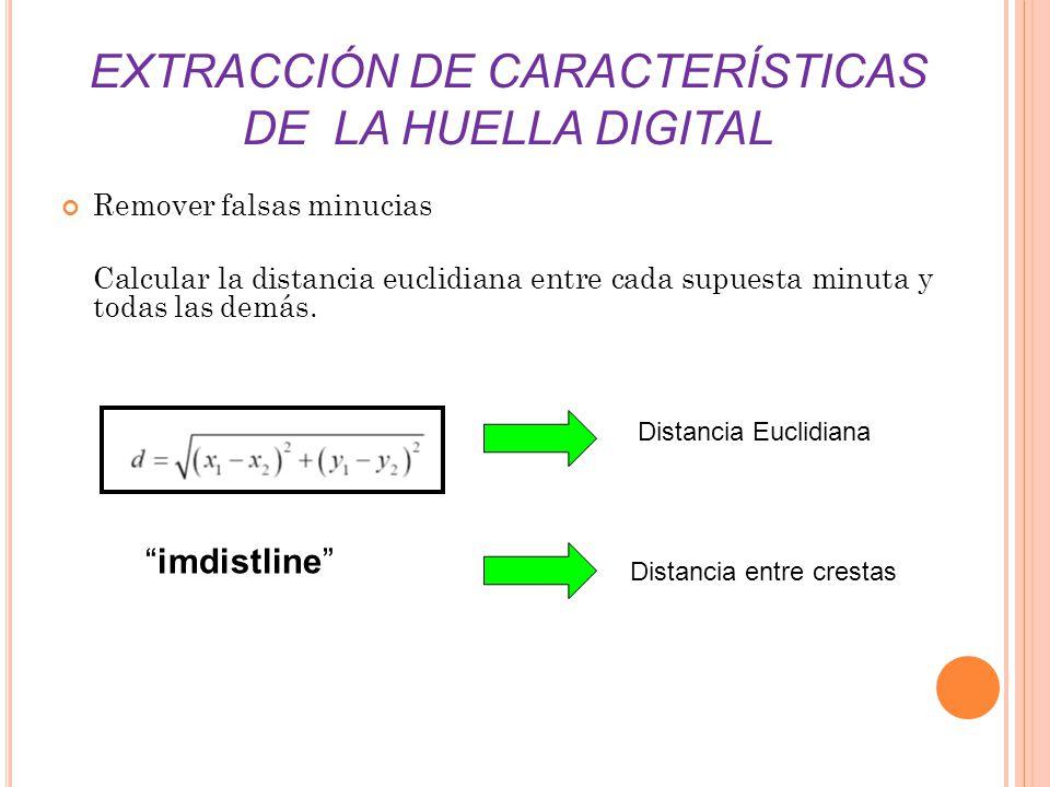 EXTRACCIÓN DE CARACTERÍSTICAS DE LA HUELLA DIGITAL Remover falsas minucias Calcular la distancia euclidiana entre cada supuesta minuta y todas las dem