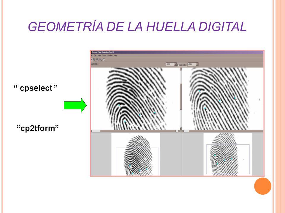 GEOMETRÍA DE LA HUELLA DIGITAL cpselect cp2tform