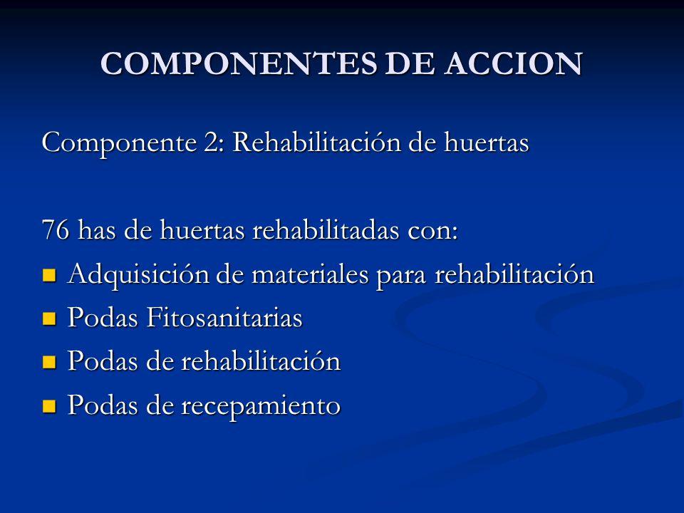 COMPONENTES DE ACCION Componente 2: Rehabilitación de huertas 76 has de huertas rehabilitadas con: Adquisición de materiales para rehabilitación Adqui