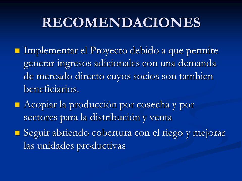 RECOMENDACIONES Implementar el Proyecto debido a que permite generar ingresos adicionales con una demanda de mercado directo cuyos socios son tambien
