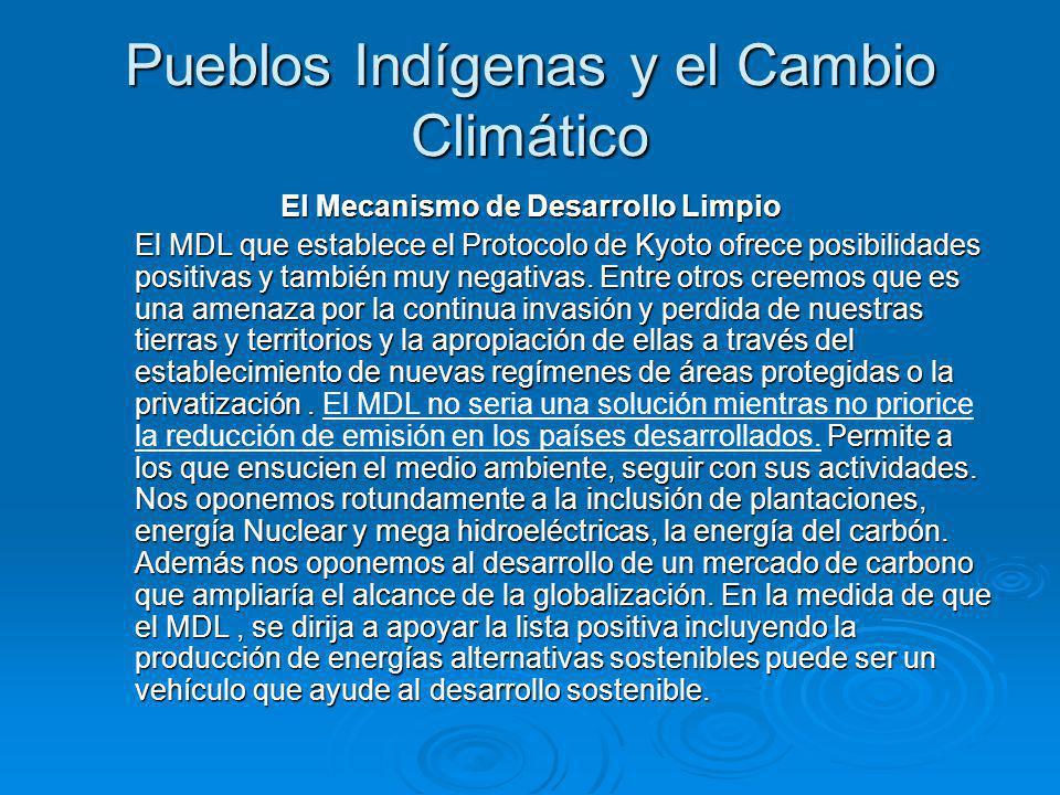 Pueblos Indígenas y el Cambio Climático El Mecanismo de Desarrollo Limpio El MDL que establece el Protocolo de Kyoto ofrece posibilidades positivas y también muy negativas.