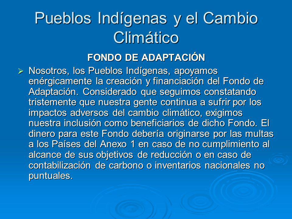 Pueblos Indígenas y el Cambio Climático FONDO DE ADAPTACIÓN Nosotros, los Pueblos Indígenas, apoyamos enérgicamente la creación y financiación del Fondo de Adaptación.