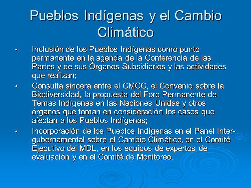 Pueblos Indígenas y el Cambio Climático Inclusión de los Pueblos Indígenas como punto permanente en la agenda de la Conferencia de las Partes y de sus Órganos Subsidiarios y las actividades que realizan; Inclusión de los Pueblos Indígenas como punto permanente en la agenda de la Conferencia de las Partes y de sus Órganos Subsidiarios y las actividades que realizan; Consulta sincera entre el CMCC, el Convenio sobre la Biodiversidad, la propuesta del Foro Permanente de Temas Indígenas en las Naciones Unidas y otros órganos que toman en consideración los casos que afectan a los Pueblos Indígenas; Consulta sincera entre el CMCC, el Convenio sobre la Biodiversidad, la propuesta del Foro Permanente de Temas Indígenas en las Naciones Unidas y otros órganos que toman en consideración los casos que afectan a los Pueblos Indígenas; Incorporación de los Pueblos Indígenas en el Panel Inter- gubernamental sobre el Cambio Climático, en el Comité Ejecutivo del MDL, en los equipos de expertos de evaluación y en el Comité de Monitoreo.