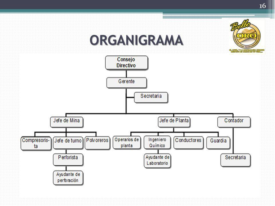 ORGANIGRAMA 16