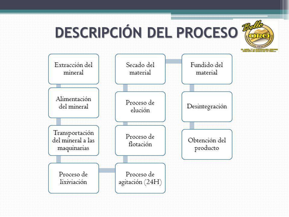 Extracción del mineral Alimentación del mineral Transportación del mineral a las maquinarias Proceso de lixiviación Proceso de agitación (24H) Proceso