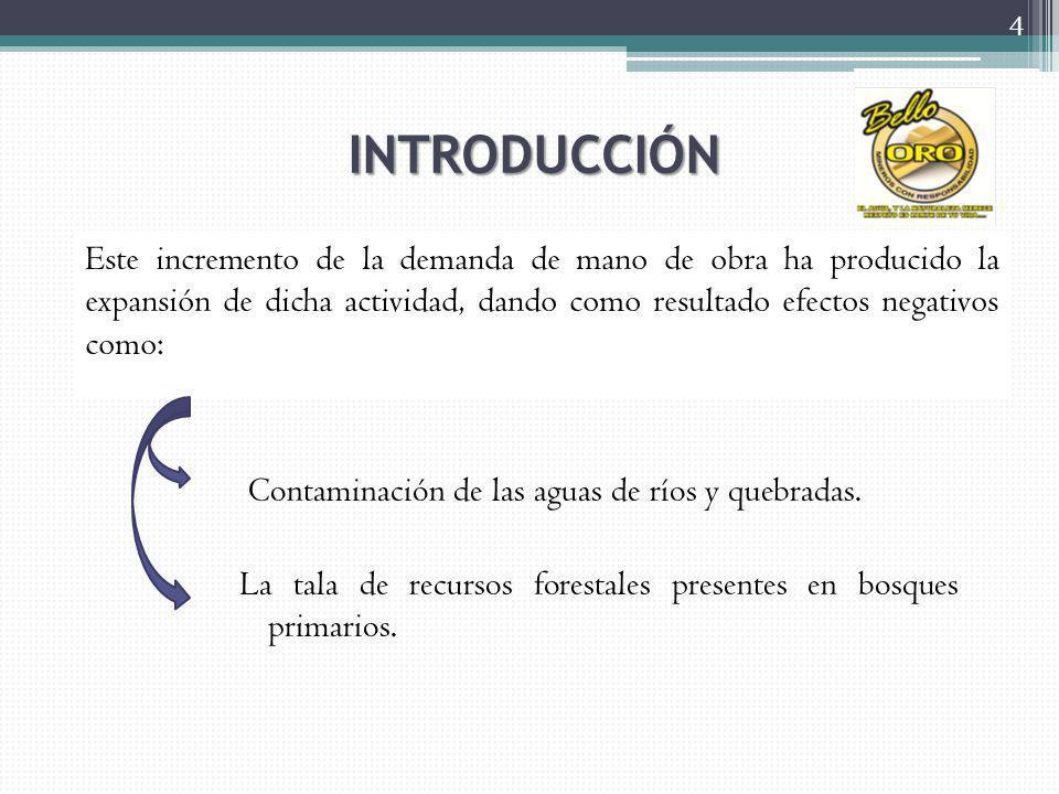 DETERMINACION DE INGRESOS 55