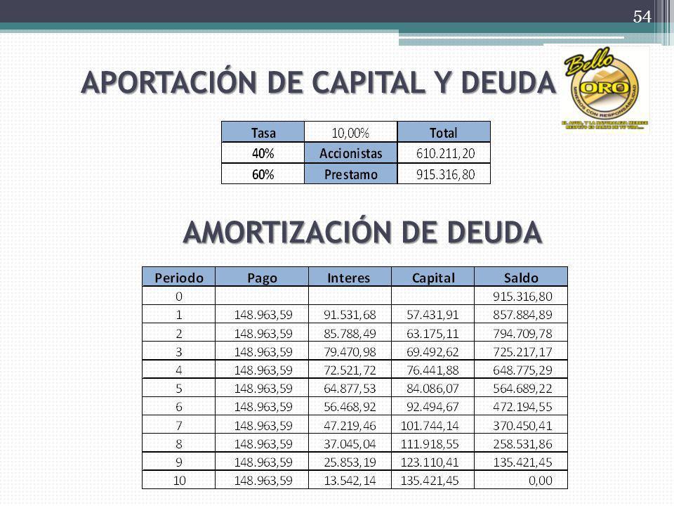 APORTACIÓN DE CAPITAL Y DEUDA AMORTIZACIÓN DE DEUDA 54