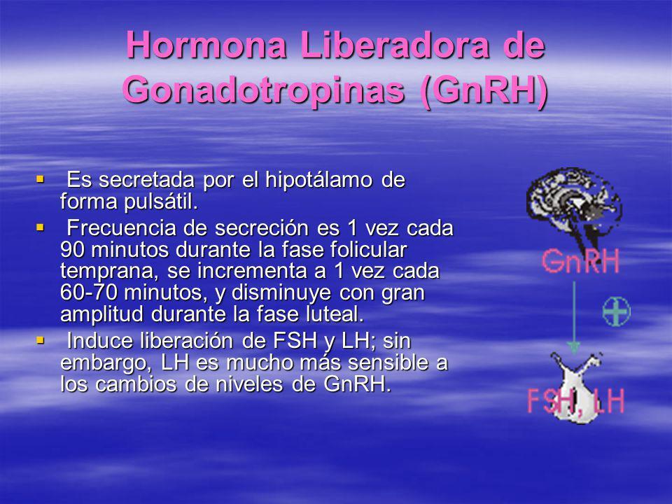 Hormona Liberadora de Gonadotropinas (GnRH) Es secretada por el hipotálamo de forma pulsátil. Es secretada por el hipotálamo de forma pulsátil. Frecue