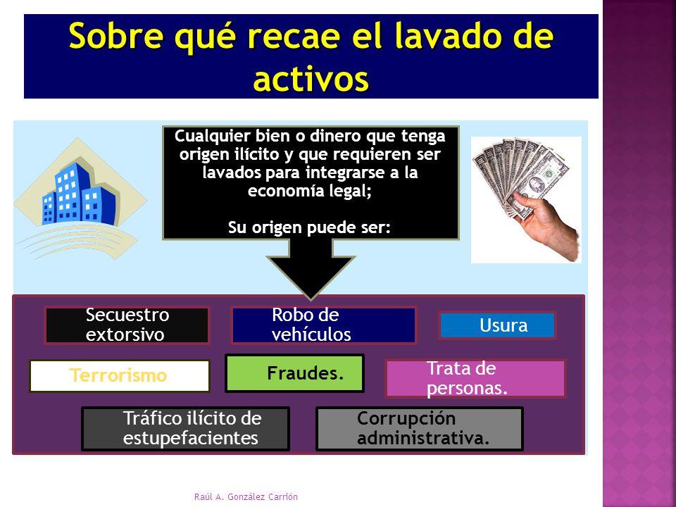 Tráfico ilícito de estupefacientes Usura Trata de personas. Robo de vehículos Secuestro extorsivo Corrupción administrativa. Fraudes. Terrorismo Sobre