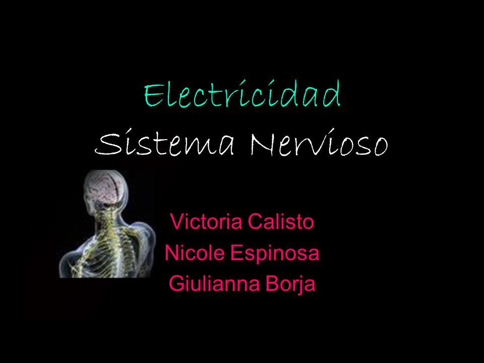 Electricidad Sistema Nervioso Victoria Calisto Nicole Espinosa Giulianna Borja