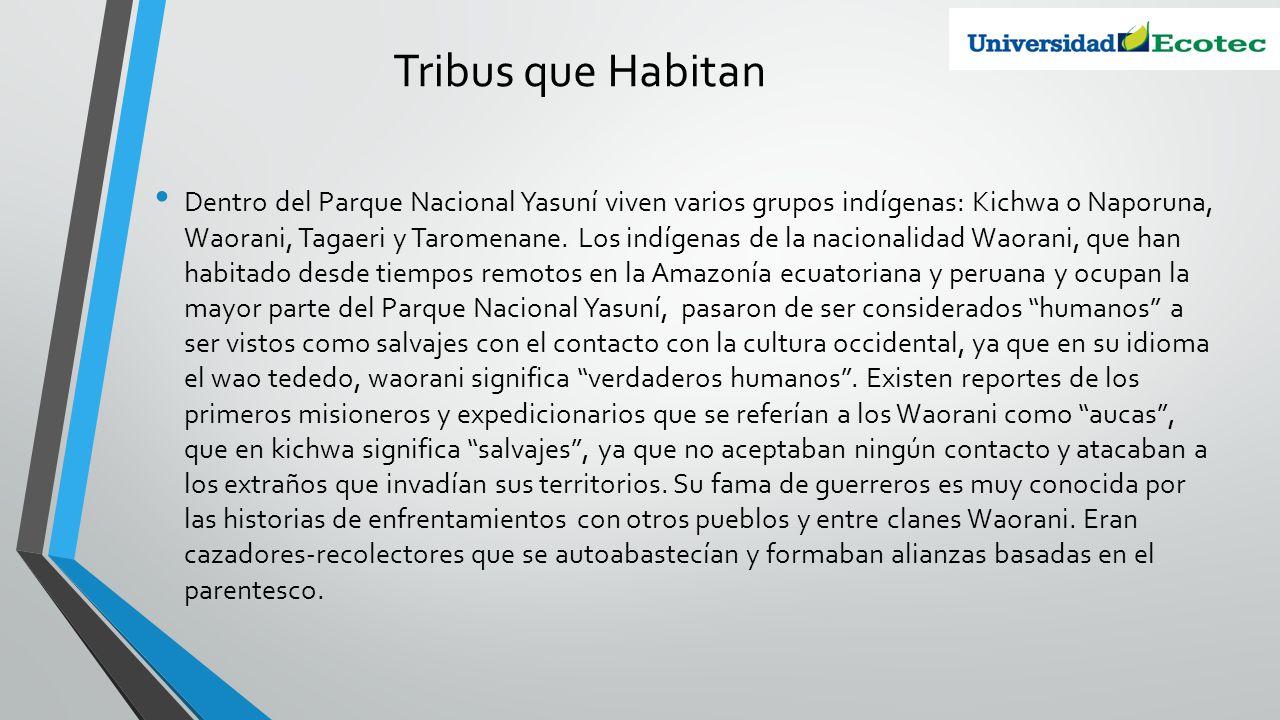Tribus que Habitan Dentro del Parque Nacional Yasuní viven varios grupos indígenas: Kichwa o Naporuna, Waorani, Tagaeri y Taromenane. Los indígenas de