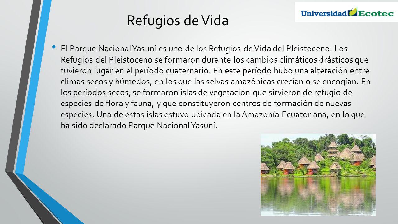 Refugios de Vida El Parque Nacional Yasuní es uno de los Refugios de Vida del Pleistoceno. Los Refugios del Pleistoceno se formaron durante los cambio
