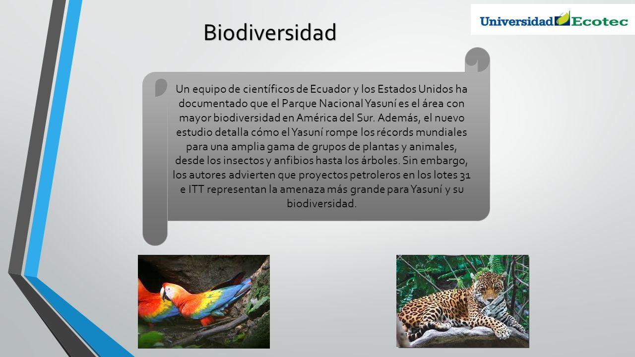 Biodiversidad Un equipo de científicos de Ecuador y los Estados Unidos ha documentado que el Parque Nacional Yasuní es el área con mayor biodiversidad