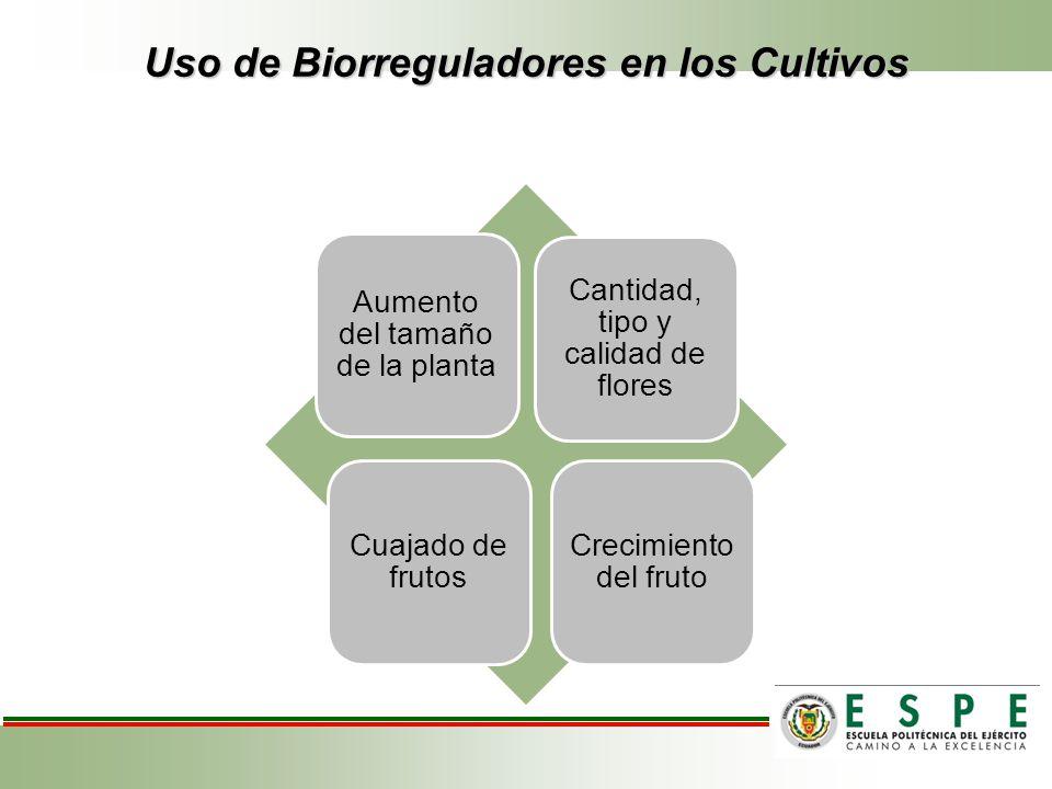 Uso de Biorreguladores en los Cultivos Aumento del tamaño de la planta Cuajado de frutos Crecimiento del fruto Cantidad, tipo y calidad de flores