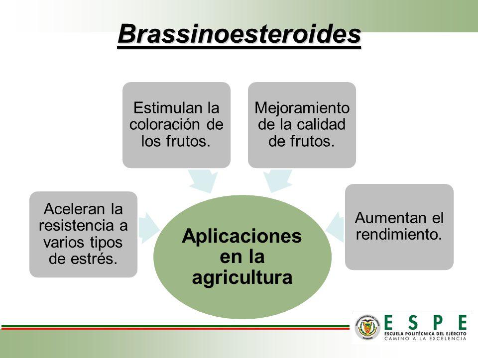 Brassinoesteroides Aplicaciones en la agricultura Aceleran la resistencia a varios tipos de estrés. Estimulan la coloración de los frutos. Mejoramient