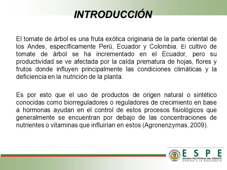 INTRODUCCIÓN El tomate de árbol es una fruta exótica originaria de la parte oriental de los Andes, específicamente Perú, Ecuador y Colombia. El cultiv