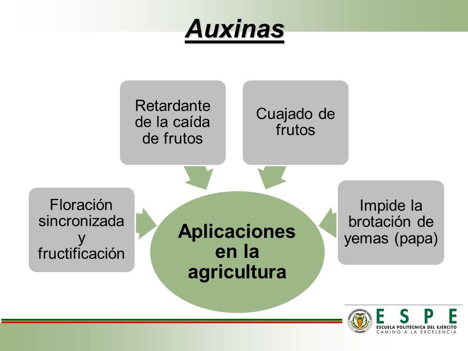 Auxinas Aplicaciones en la agricultura Floración sincronizada y fructificación Retardante de la caída de frutos Cuajado de frutos Impide la brotación