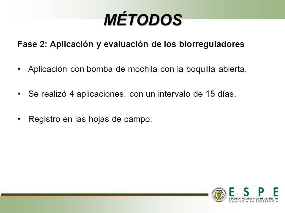 MÉTODOS Fase 2: Aplicación y evaluación de los biorreguladores Aplicación con bomba de mochila con la boquilla abierta. Se realizó 4 aplicaciones, con