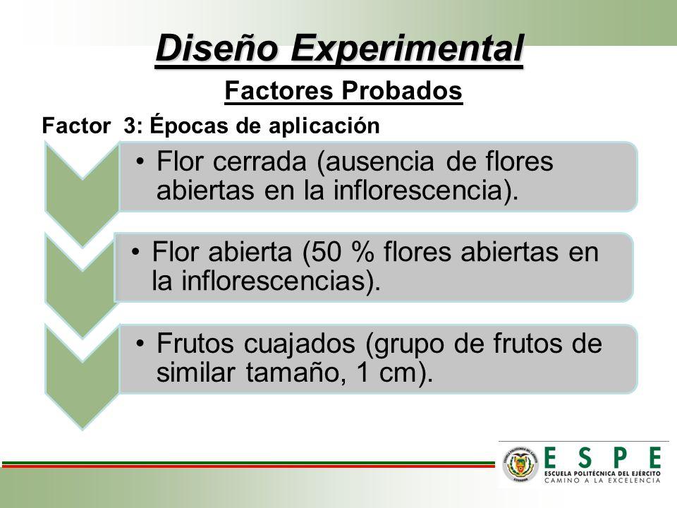 Diseño Experimental Factores Probados Factor 3: Épocas de aplicación Flor cerrada (ausencia de flores abiertas en la inflorescencia). Flor abierta (50