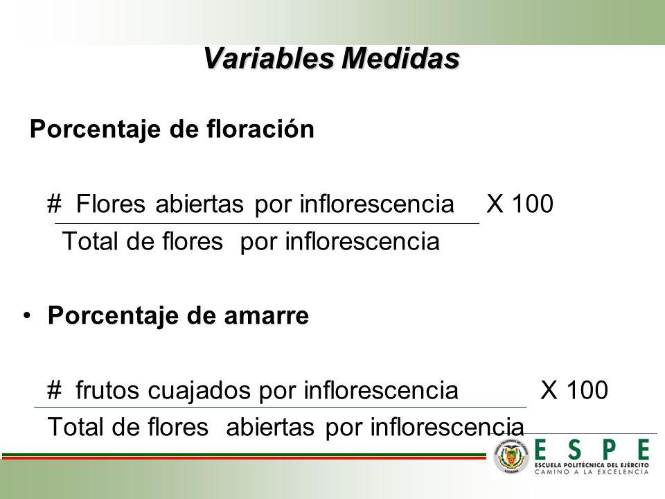 Variables Medidas Porcentaje de floración # Flores abiertas por inflorescencia X 100 Total de flores por inflorescencia Porcentaje de amarre # frutos