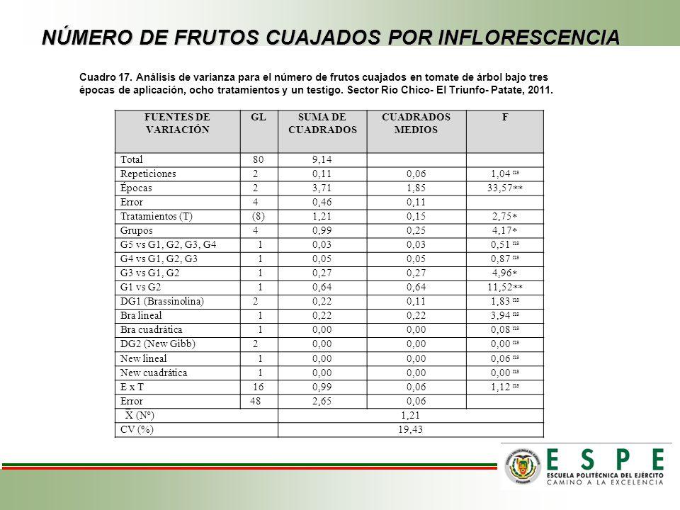NÚMERO DE FRUTOS CUAJADOS POR INFLORESCENCIA Cuadro 17. Análisis de varianza para el número de frutos cuajados en tomate de árbol bajo tres épocas de