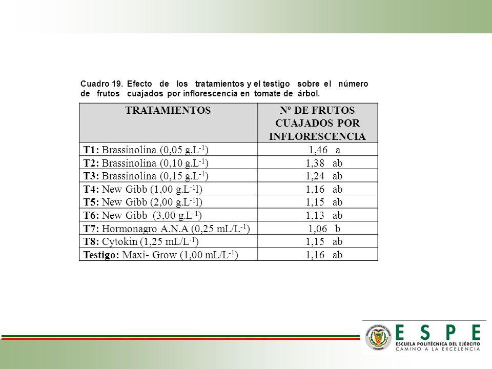 Cuadro 19. Efecto de los tratamientos y el testigo sobre el número de frutos cuajados por inflorescencia en tomate de árbol. TRATAMIENTOSNº DE FRUTOS