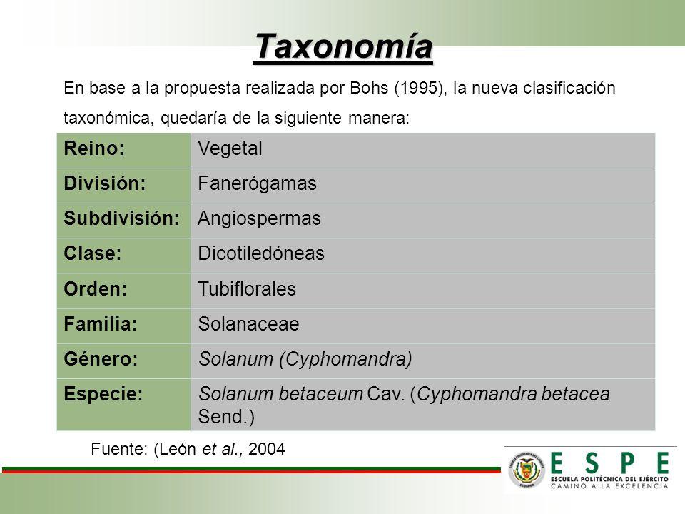 Reino:Vegetal División:Fanerógamas Subdivisión:Angiospermas Clase:Dicotiledóneas Orden:Tubiflorales Familia:Solanaceae Género:Solanum (Cyphomandra) Es