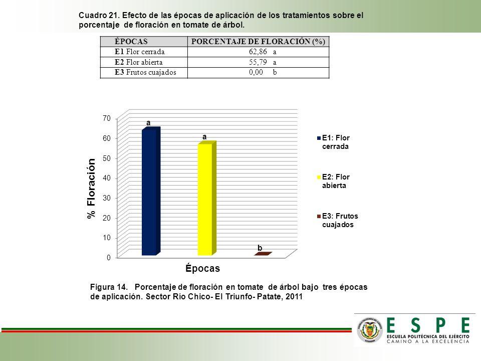 Cuadro 21. Efecto de las épocas de aplicación de los tratamientos sobre el porcentaje de floración en tomate de árbol. Figura 14. Porcentaje de florac