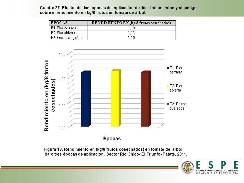 Cuadro 27. Efecto de las épocas de aplicación de los tratamientos y el testigo sobre el rendimiento en kg/8 frutos en tomate de árbol. Figura 18. Rend