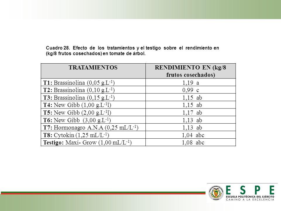 Cuadro 28. Efecto de los tratamientos y el testigo sobre el rendimiento en (kg/8 frutos cosechados) en tomate de árbol. TRATAMIENTOSRENDIMIENTO EN (kg