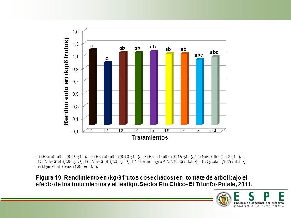 T1: Brassinolina (0,05 g.L -1 ), T2: Brassinolina (0,10 g.L -1 ), T3: Brassinolina (0,15 g.L -1 ), T4: New Gibb (1,00 g.L -1 ), T5: New Gibb (2,00 g.L