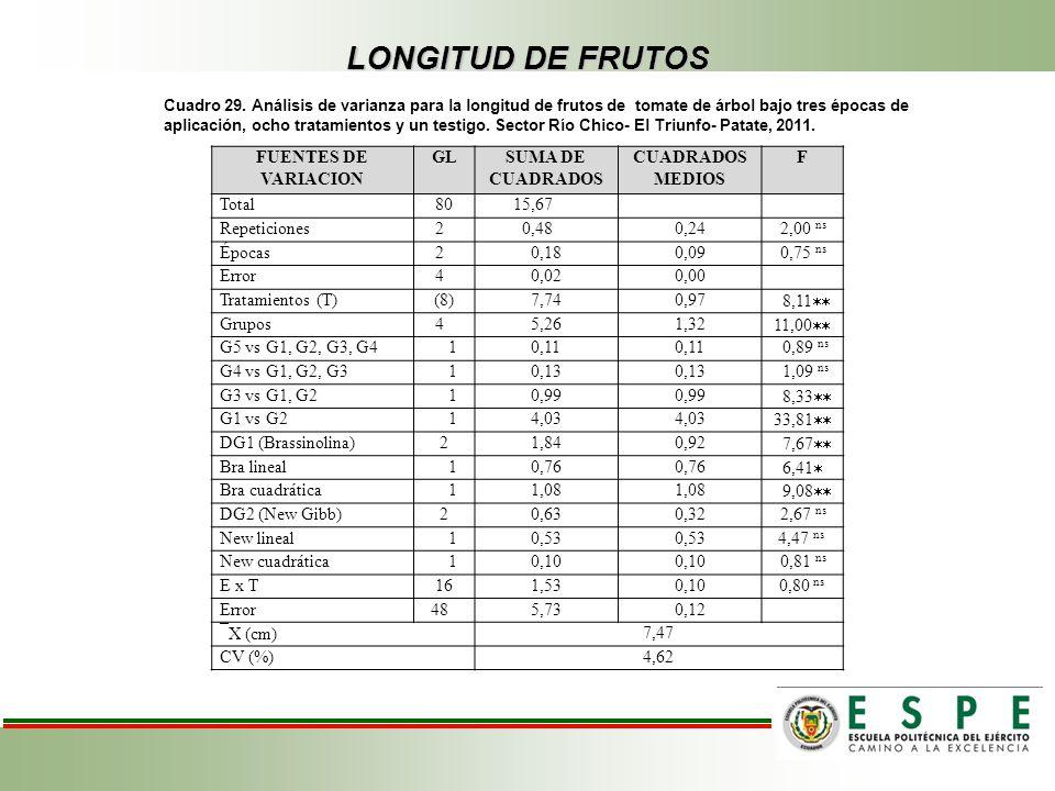 LONGITUD DE FRUTOS Cuadro 29. Análisis de varianza para la longitud de frutos de tomate de árbol bajo tres épocas de aplicación, ocho tratamientos y u